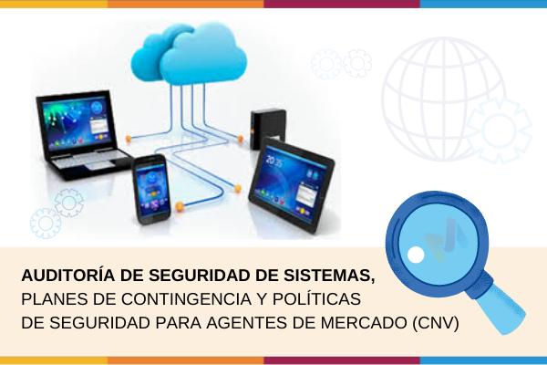 Auditoría Externa de Sistemas CNV