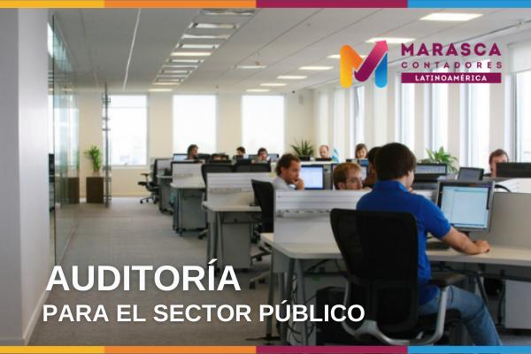 Auditoría para el sector público